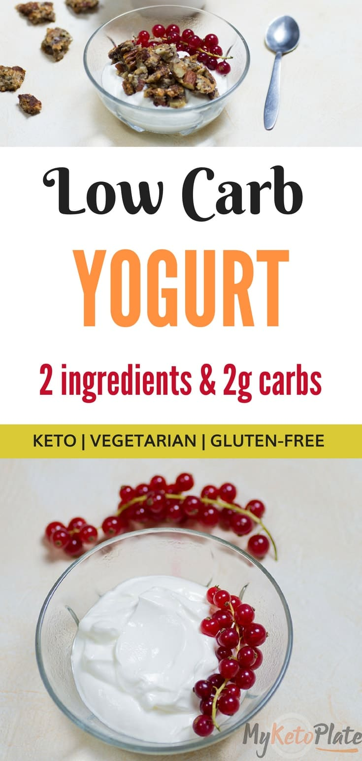 Low Carb Yogurt - 2 Ingredients | Keto Friendly